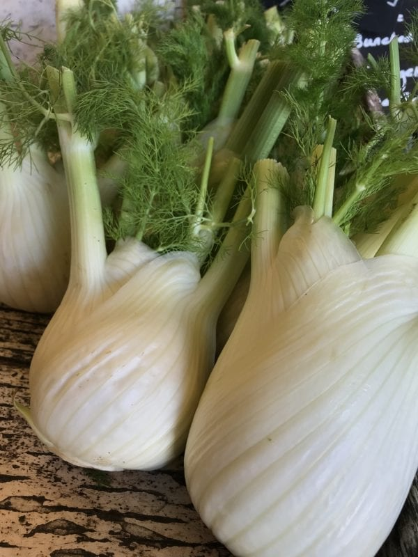 Fennel Hearts