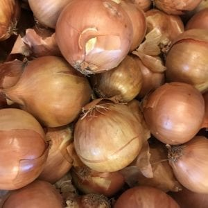 Cooking Onions (500g)