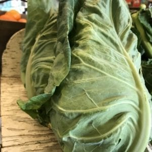 Hispi Cabbage