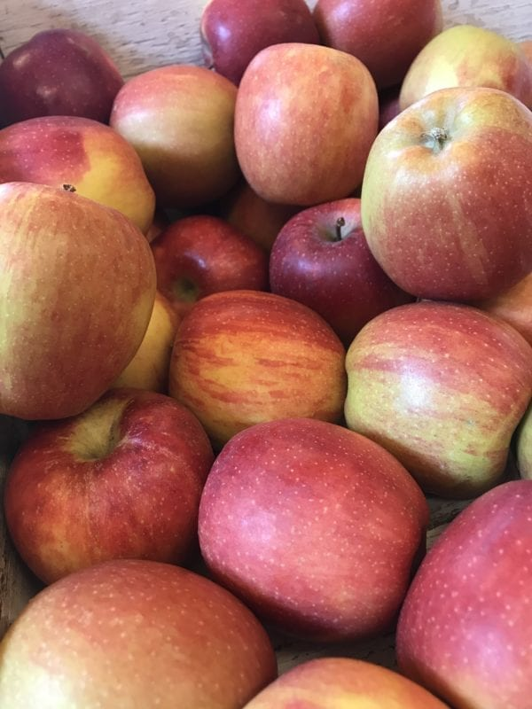 Apples Gala (500g)